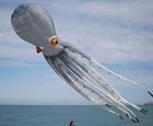 法国巨型章鱼风筝.jpg
