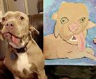 有两张嘴的狗.jpg