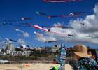 澳大利亚最大风筝节举行