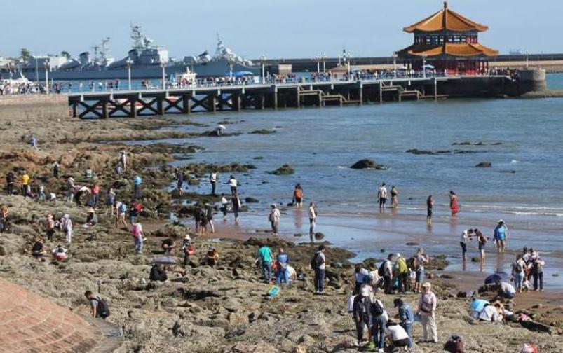 退大潮海滩挖蛤蜊