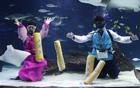 水下穿韩服玩游戏.jpg