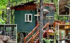 九岁男孩设计树屋 .jpg