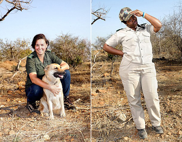 危险保护野生动物