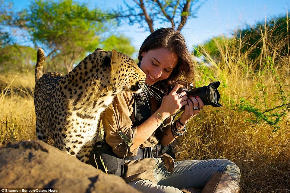 美女与野兽:拍摄野生动物 身上伤疤无数
