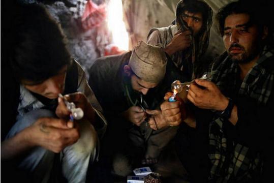 """巴基斯坦人冒险抽""""蝎子烟"""" 毒性使人兴奋"""