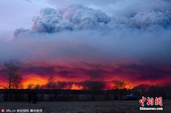 加拿大林火面积超1500平方公里 未来或扩大一倍