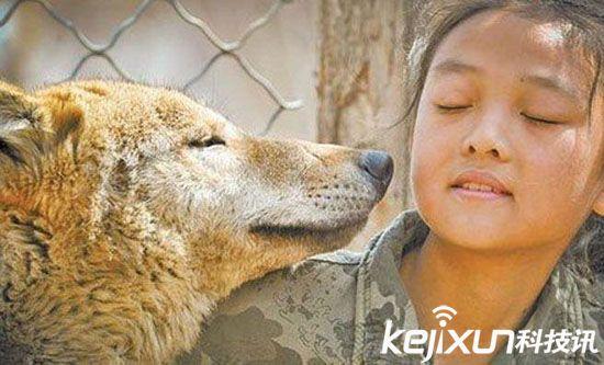 父亲为训练女儿 竟让其与野狼同笼用生命来教育