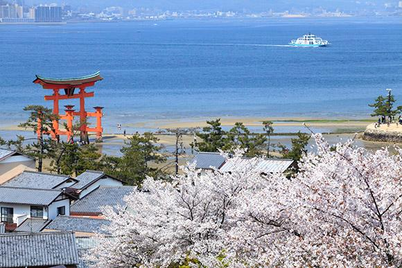 日本旅游自由行攻略·广岛,从废墟生长出来的一朵花
