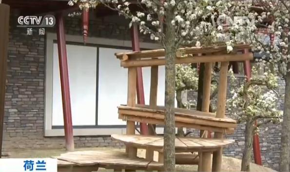 """荷兰欧维汉斯动物园的中式""""宫殿"""" 等待中国大熊猫到来"""