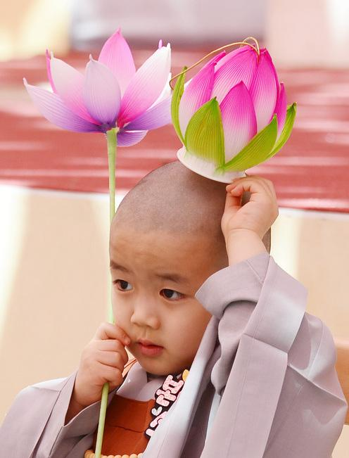 韩国曹溪寺举行童子僧剃度仪式 小和尚手摸光头萌态可掬【组图】
