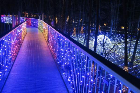 日本长野阿尔卑斯安昙野公园将举办夏季灯会