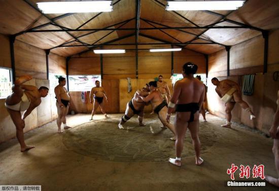 在Tomozuna训练场内,这里的主人、蒙古出生的相扑力士Tomozuna Oyakata参加他的摔跤手们的训练。