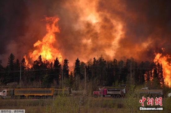 加拿大林火致石油减产 每日经济损失数千万美元