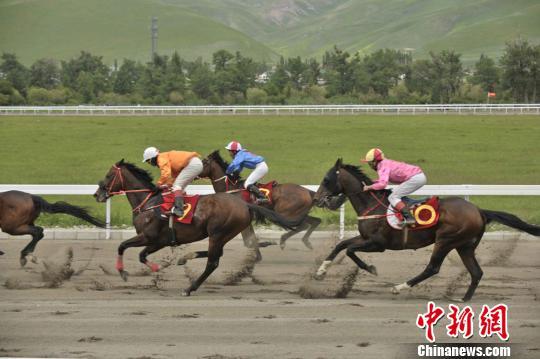 2016中国速度赛马大奖赛那拉提站将于6月开赛