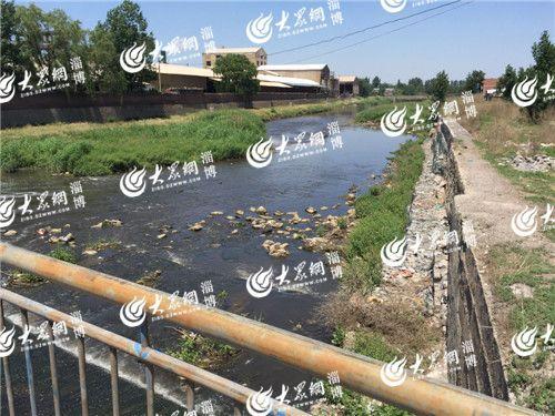 记者探寻淄川失踪女孩尸体打捞地点 距家仅5公里
