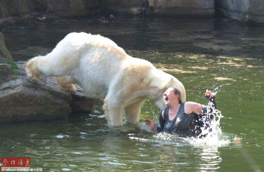 动物园北极熊馆内