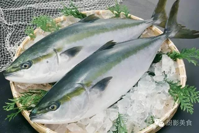 盘点世界顶级食用鱼 中国特有黄唇鱼全球最贵