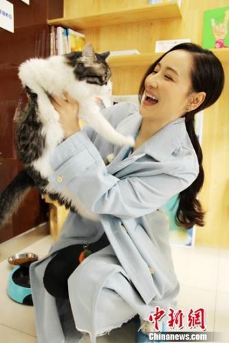 孙宁小清新形象出席千赢活动 为流浪动物再发声