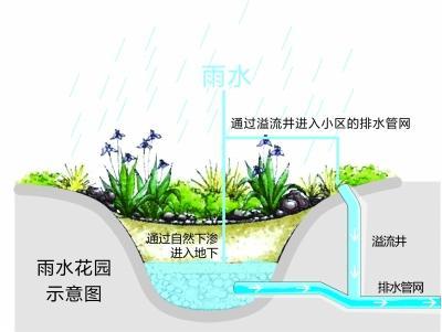 海绵 小区雨水就地消化图片