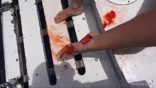 """女优与鲨共舞遭咬 当场溅血海中伤口缝了20针自曝是""""惊人的经历"""""""