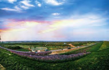 渭河渭南城区段滩区治理成效(雷定邦 摄)