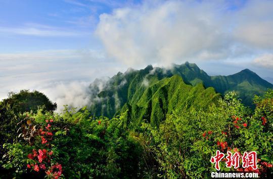 图为秀山川河盖景区的梳子山.秀山宣传部供图-重庆秀山川河盖用 花