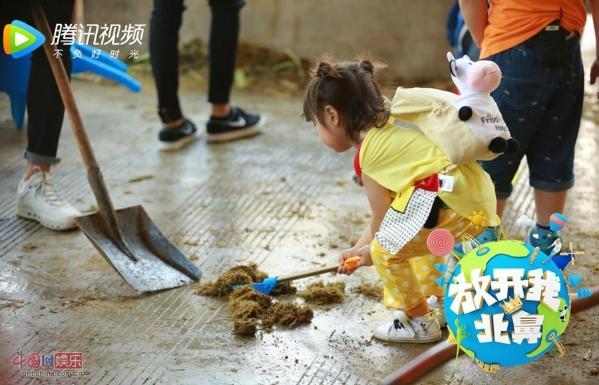 来幼儿因缺乏爱护动物的意识而误伤小动物的社会案例