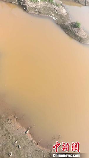 澧河(任县段)环水村河道内河水突然变成红色,周围还弥漫着一股刺鼻的气味。 张鹏翔 摄