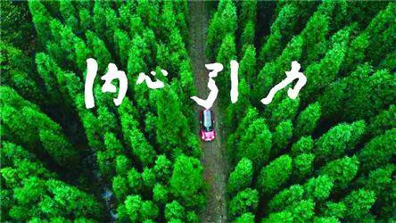 森林文艺 唯美 伤感