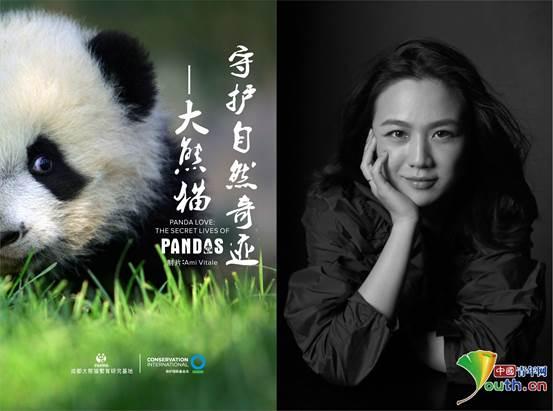 公益影片《守护自然奇迹—大熊猫》官方海报_副本