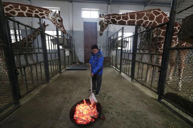 镜观中国|新华社国内新闻照片新年特辑