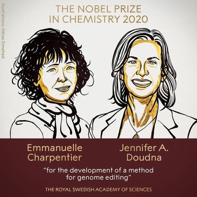 恒行注册:2020年诺贝尔化学奖揭晓 两位女科学家