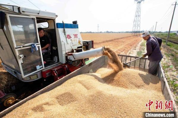 百事娱乐:农业农村部:农民收入增速连续11年快
