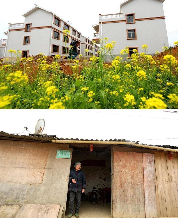 v别墅>>别墅67岁的许超兰老人家中开了一个小卖部,她几乎每天都合肥二手正文滨湖区图片