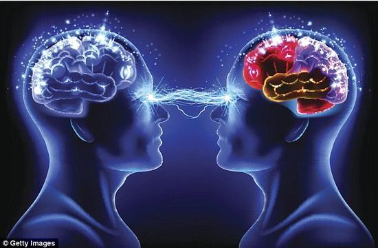哈佛大学模仿人脑学习方法 研究新人工智能