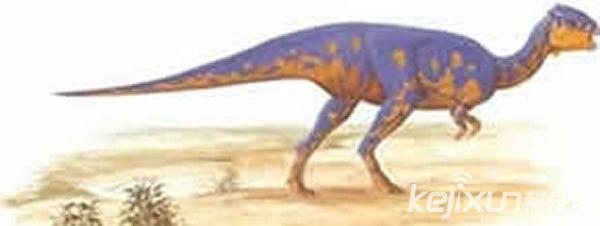 什叁种小型恐龙 你对立想不到的最小恐龙