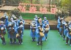 熊猫宝宝集体拜年