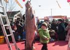海安冬季捕鱼节