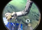 海底世界见闻记