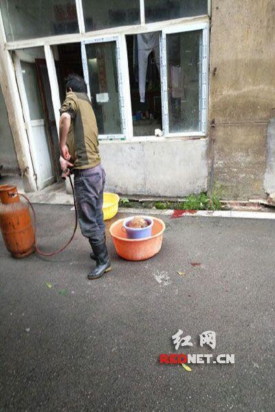 长沙某高校宿舍区男子当众杀狗:它只是一道菜