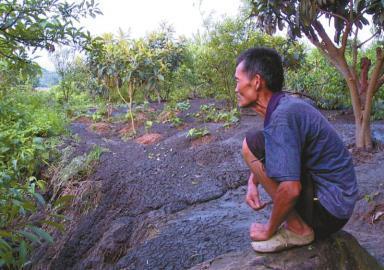 """""""粪便泥石流""""淹了半山 污染水源村民吃水难"""