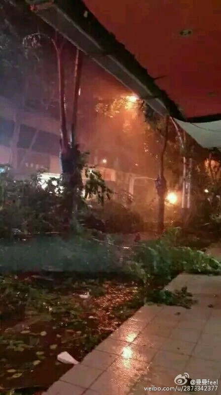 台风银河登陆海南:动态走势图曝光 已有人受伤