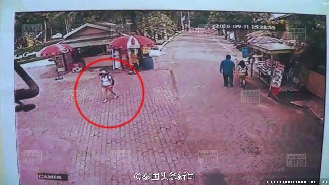 一名36岁中国游客在泰国老虎园失踪 仍未发现踪迹