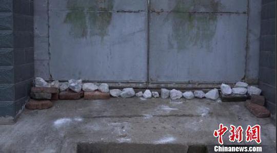 南京眼镜蛇逃逸曝光40小时:家家户户石灰封门窗