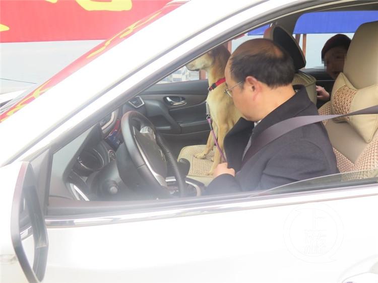 一家人走亲戚 狗坐副驾驶3人挤后排被罚款