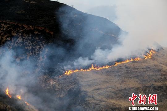 道孚山火现场。 罗艺鑫 摄