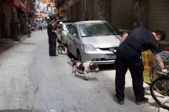 7岁男孩上学路上被砍断手 警方出动警犬搜寻断肢
