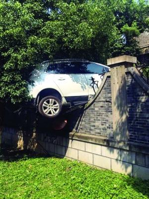 """女子误将油门当刹车 车子装穿围栏""""挂""""树上"""
