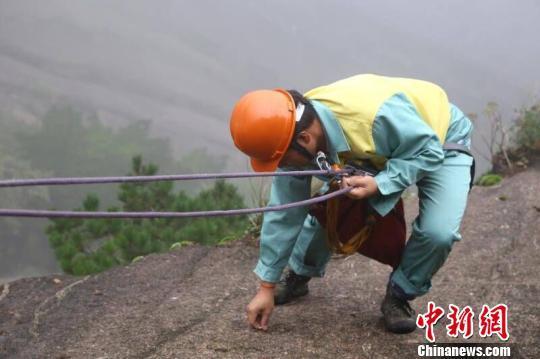 用于拾捡垃圾的绳子,每根有50米长,是专业的户外登山绳索.
