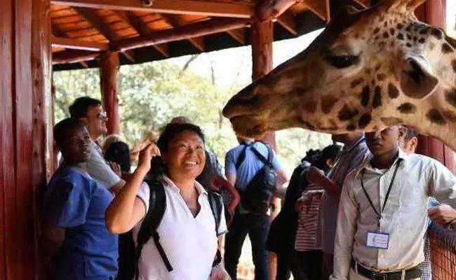 """不是段子!大批中国游客为避暑""""逃""""到非洲"""